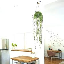 innovation how to hang plants from ceiling install hooks for hanging drop