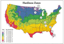 Plant Zone Chart What Is Plant Hardiness Digger Odell Nursery