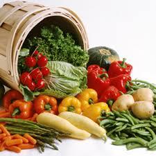 """Résultat de recherche d'images pour """"legumes de saison"""""""