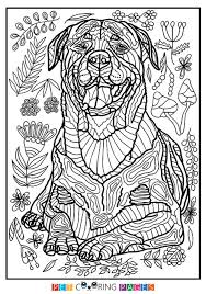 Small Picture 855 best Animal Colouring images on Pinterest Coloring books