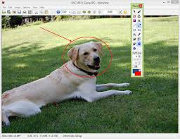 love photo editor software apps irfanview