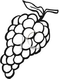 grapes clipart black and white. white grapes cliparts #2429219 clipart black and s