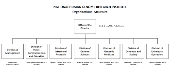 nhgri fy congressional justification national human genome nhgri organizational structure chart the chart shows 6 boxes the office of the director