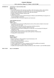 Casual Resume Example Seaman Resume Samples Velvet Jobs 40