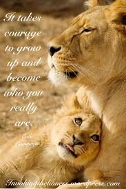lioness and cubs quotes. Unique And Lioness Quotes Who You Really Are  LeoLions Pinterest Quotes  Quotes And Lion Inside And Cubs