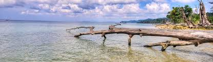 Andaman Tour Packages Book Andaman Holiday Package At Best