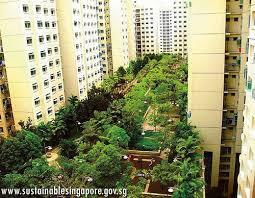 rooftop gardens urban courtyards