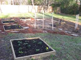 how to start a small garden. How To Start A Small Box Garden S
