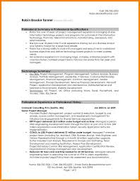 An Example Of A Professional Summary For Resume Best Of 10