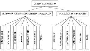 Основные отрасли психологии Психология личности патопсихология нейропсихология