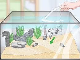Freshwater Fish Tank Temperature Chart The Best Way To Set Up A Tropical Freshwater Aquarium Wikihow