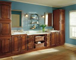 Reface Bathroom Cabinets Cabinets And Vanities
