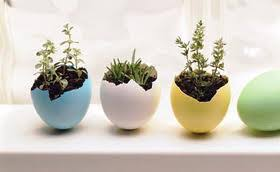 home made decoration design your sweet home