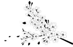 白黒の桜イラスト 無料フリー 素材good