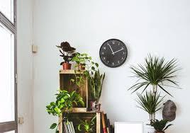 13 eco friendly home decor picks to