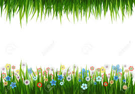grass and flowers background. Unique Flowers Vector  Illustration Of A Nature Background With Grass And Flowers Throughout Grass And Flowers Background