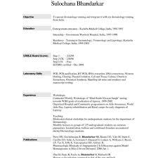 Word Sample Resume Resume Templates Examples Free Free Template Resume Microsoft Word 15