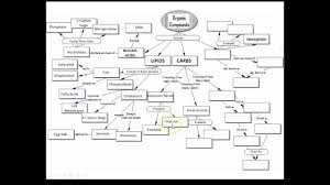 Answers Organic Molecules Concept Map