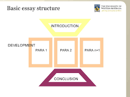 structure an essay co essay structure for arts students