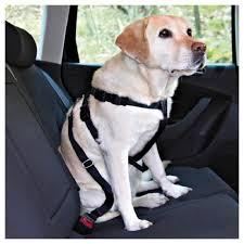 Купить <b>Фиксирующий ремень для</b> собак TRIXIE 1290 70 см в ...