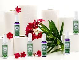 Best Bathroom Deodorizer Spray - Thedancingparent.com