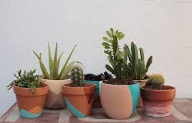 put a plant on it diy painted terra cotta pots