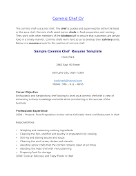 Job Resume Free Sample Resume Templates For Chef Free Executive