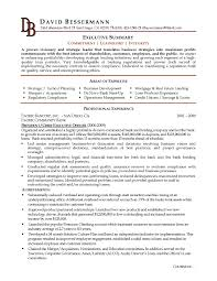 Executive Summary Example Resume Examples Qualifications Customer