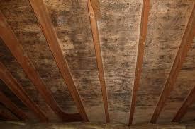 mold in attic. Modren Attic Mold In Attic Humidity Increased And In T