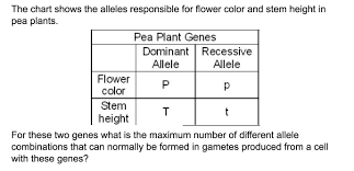 The Chart Shows The Alleles Responsible For Flower Color And