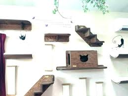 wall mounted cat stairs shelves lack