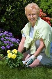 Image result for activities of aging