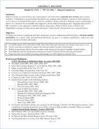 Sales Representative Resume Examples Sale Representative Resume Sample publicassetsus 93