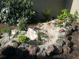 pictures of small rock gardens garden in best plants for ga