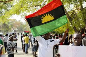 Image result for biafra in school