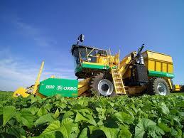 Oxbo 2475 <b>Green Bean</b> Harvester