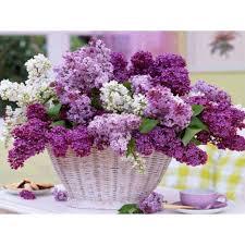 Basket Flower Decoration Online Get Cheap Paper Flower Basket Aliexpresscom Alibaba Group