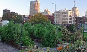 downtown st louis community garden