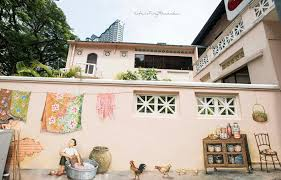An amah, or housemaid, handwashes her kebayas and sarongs in a metal tub. Street Art Of Singapore Everton Road