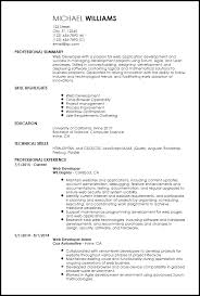 Web Developer Resume Simple Free EntryLevel Web Developer Resume Templates ResumeNow