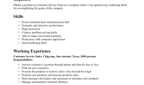 Resume Writing Services San Antonio Resume Template