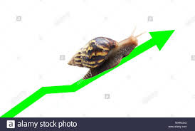 Victory Arrow Chart Snail Travel Along The Green Arrow Line Of The Currency