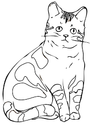 Cool Cat Color Sheets