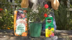 best garden fertilizer. Wonderful Fertilizer YouTube Premium Intended Best Garden Fertilizer Q