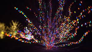 Longwood Christmas Season | Longwood Gardens