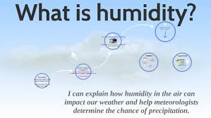 What is Humidity? by Mercedes Fink