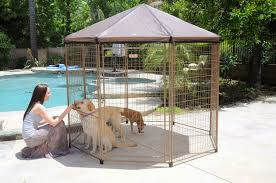 and advantek pets pavilion play outdoors more decorative pen solution