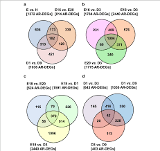 Venn Diagram Purpose These Venn Diagrams Represent Comparisons Made From 12