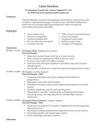 Sales Skills Resume Impressive Sales General Manager CV Template CV Samples Examples