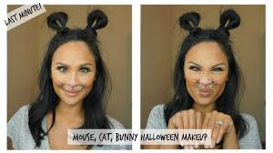 easy to do cute mouse cat or rabbit makeup last minute look